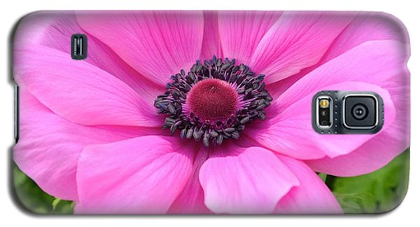 Galaxy S5 Case featuring the photograph Pink Flower by Jeannie Rhode