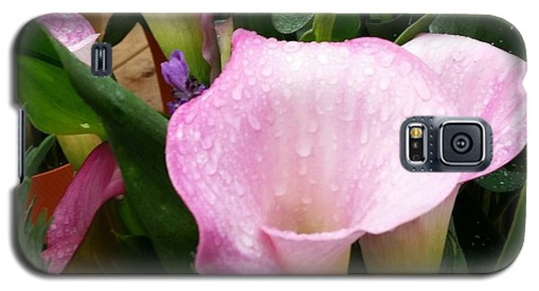 Galaxy S5 Case featuring the photograph Pink Flower by Rose Wang
