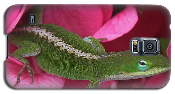 Pink Hydrangea And Lizard 2 Galaxy S5 Case