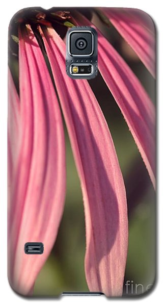 Galaxy S5 Case featuring the photograph Pink Petals by Yumi Johnson