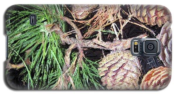 Pitch Pine Cone Galaxy S5 Case by Susan Carella