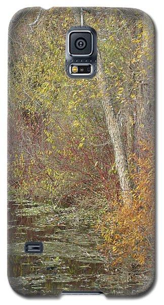 Pondside Pastel Galaxy S5 Case by Ann Horn
