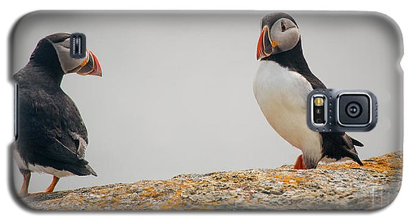 You Talking To Me? Galaxy S5 Case by Jim  Hatch