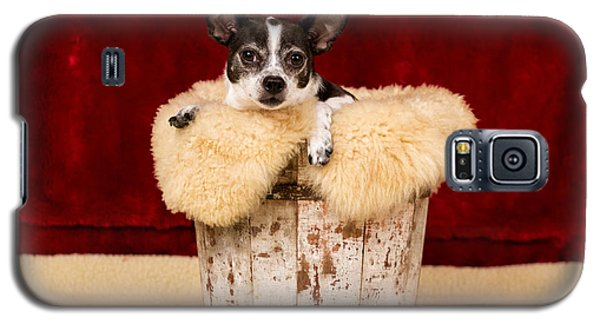Puppy In The Bucket  Galaxy S5 Case