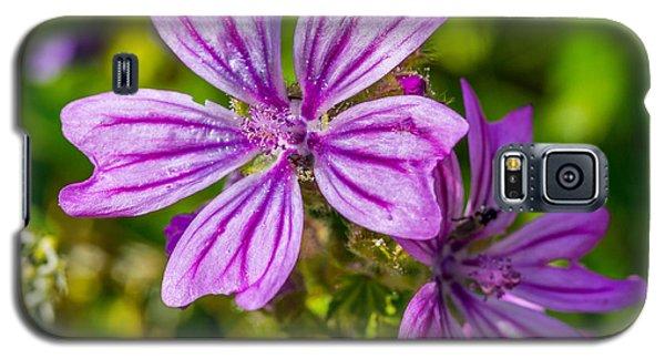 Purple Flower. Galaxy S5 Case