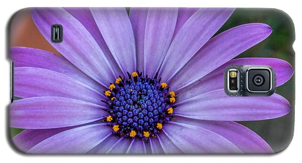 Galaxy S5 Case featuring the photograph Purple Flower  by Trace Kittrell