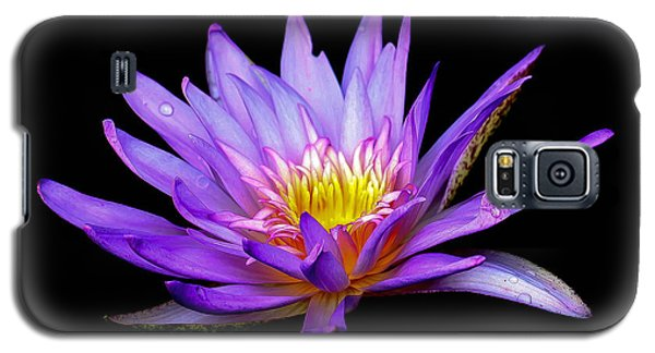 Purple Lilly Galaxy S5 Case