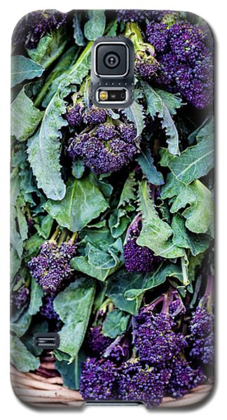 Purple Sprouting Broccoli Galaxy S5 Case by Aberration Films Ltd