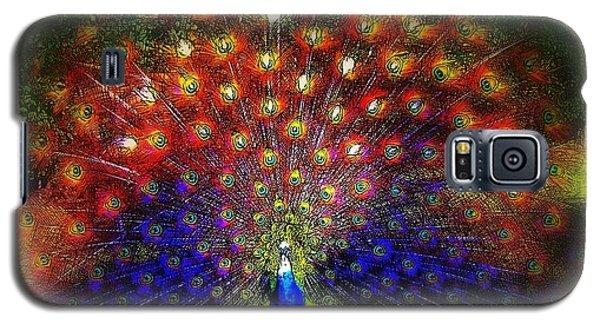 Galaxy S5 Case featuring the photograph Rainbow Peacock by Jodie Marie Anne Richardson Traugott          aka jm-ART