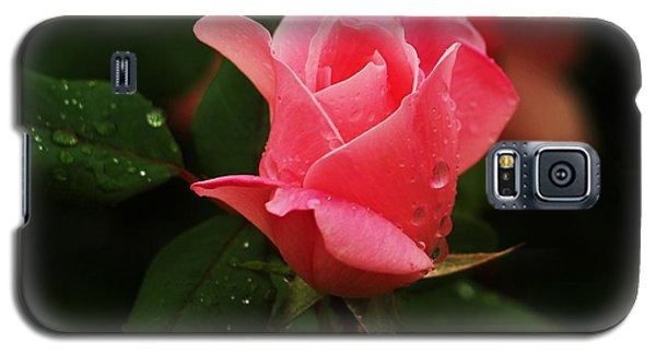 Galaxy S5 Case featuring the photograph Raindrops On Roses by Roseann Errigo