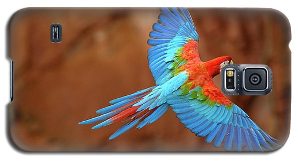 Red And Green Macaw Flying Galaxy S5 Case