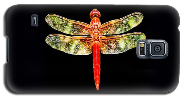 Red Dragonfly Small Galaxy S5 Case