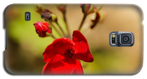 Red Flower Galaxy S5 Case