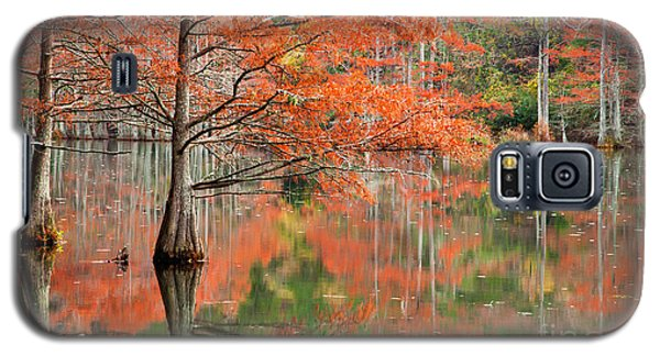 Red Forest Galaxy S5 Case by Iris Greenwell