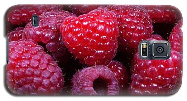Red Raspberries Galaxy S5 Case