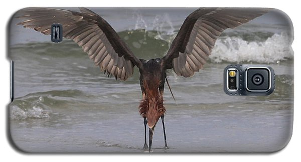 Reddish Egret Fishing Galaxy S5 Case