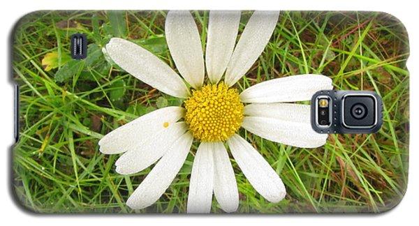 Galaxy S5 Case featuring the photograph Romashka by Yury Bashkin