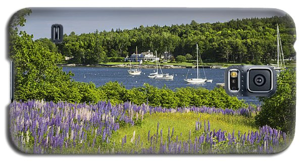 Round Pond Lupine Flowers On The Coast Of Maine Galaxy S5 Case