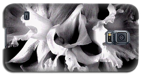 Ruffled Daffodils  Galaxy S5 Case by Marianne Dow