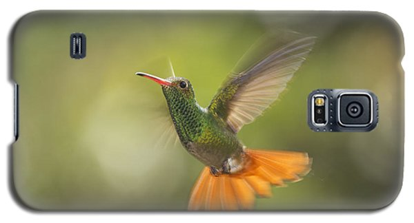 Galaxy S5 Case featuring the photograph Rufous-tailed Hummingbird by Dan Suzio