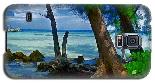 Rum Point Galaxy S5 Case by Gordon Engebretson