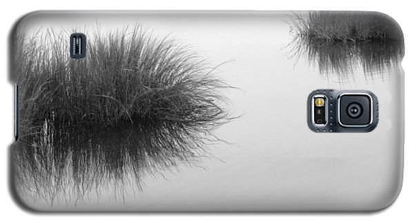 Salt Marsh Galaxy S5 Case