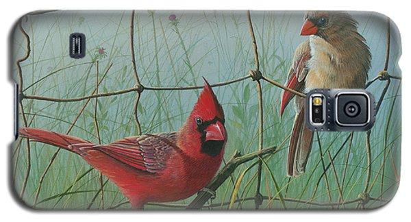 Scarlet Galaxy S5 Case