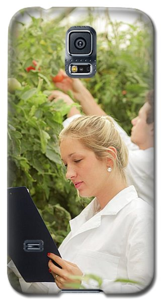 Scientists Examining Tomatoes Galaxy S5 Case by Gombert, Sigrid