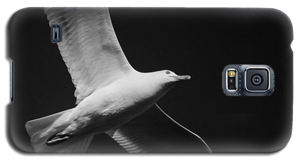 Seagull Underglow - Black And White Galaxy S5 Case