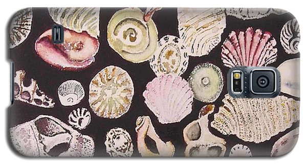 Shells By C . 1.3 Galaxy S5 Case by Cheryl Miller