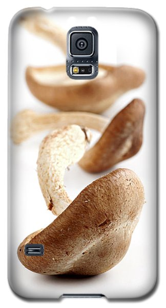 Shiitake Mushrooms Galaxy S5 Case by Elena Elisseeva