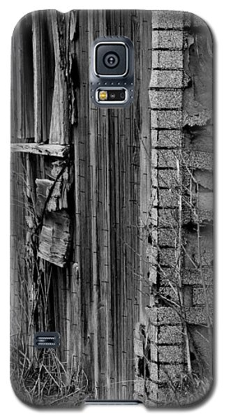 Shingles Galaxy S5 Case by Tara Lynn