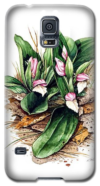 Showy Orchis Galaxy S5 Case by Bob  George