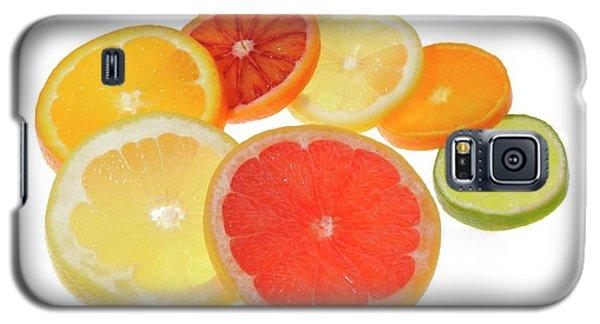 Slices Of Citrus Fruit Galaxy S5 Case