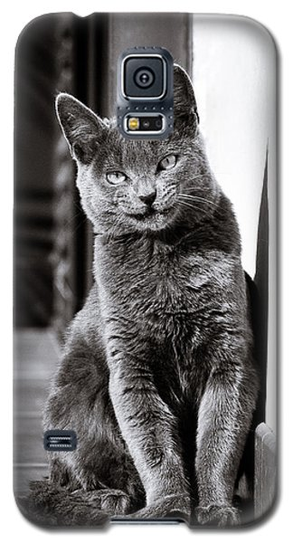 Smiling Cat Galaxy S5 Case