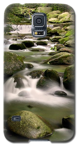 Smoky Mountain Stream Galaxy S5 Case by Cindy Haggerty