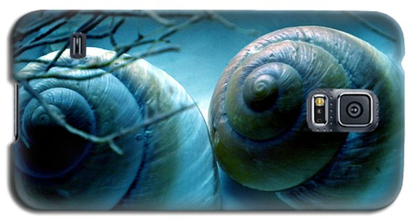Galaxy S5 Case featuring the photograph Snail Joy  by Colette V Hera  Guggenheim