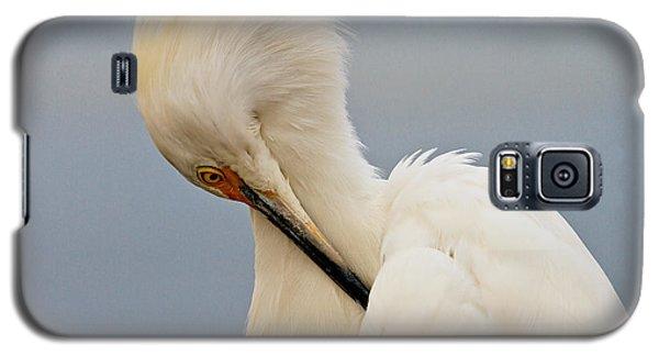 Snowy Egret Galaxy S5 Case