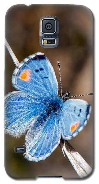 Sonoran Blue Galaxy S5 Case