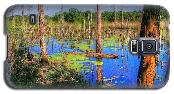 Southern Swamp Galaxy S5 Case by Ed Roberts