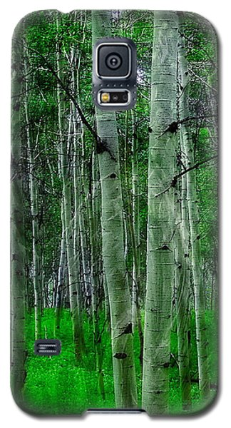 Spectacular Aspens Galaxy S5 Case