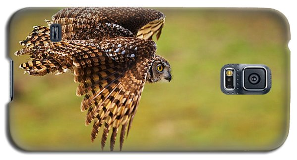 Spotted Eagle Owl In Flight Galaxy S5 Case