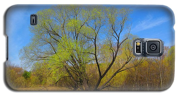 Galaxy S5 Case featuring the photograph Spring Time by Vladimir Kholostykh