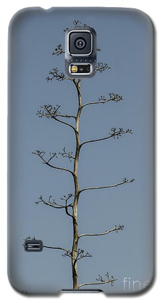 Stand Alone Galaxy S5 Case by Judy Wolinsky