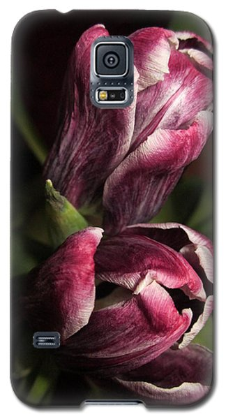 Still Beautiful Galaxy S5 Case