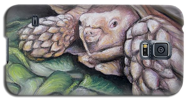 Galaxy S5 Case featuring the painting Sulcata Tortoise by Melinda Saminski