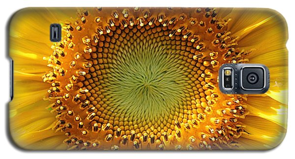 Galaxy S5 Case featuring the photograph Sunflower by Lisa L Silva