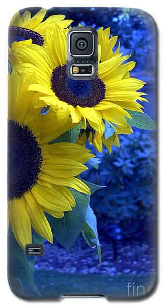 Galaxy S5 Case featuring the photograph Sunflowers by Arlene Carmel