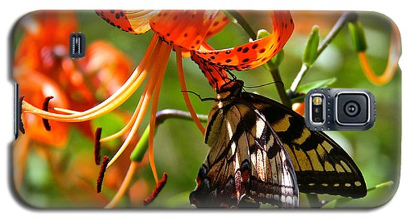 Galaxy S5 Case featuring the photograph Swallowtail Butterfly by Susan Crossman Buscho
