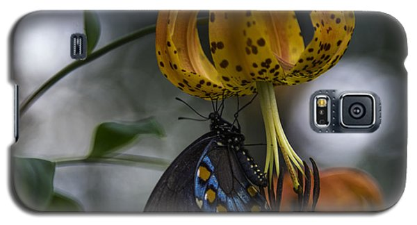 Swallowtail On Turks Cap Galaxy S5 Case